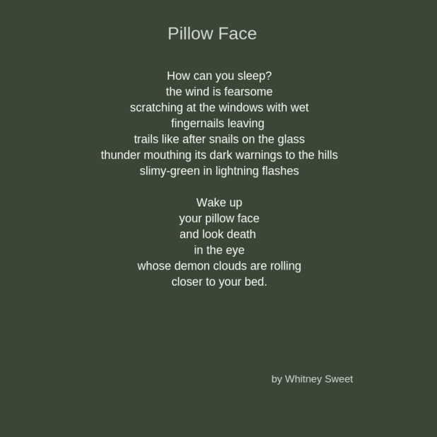Pillow Face (1)