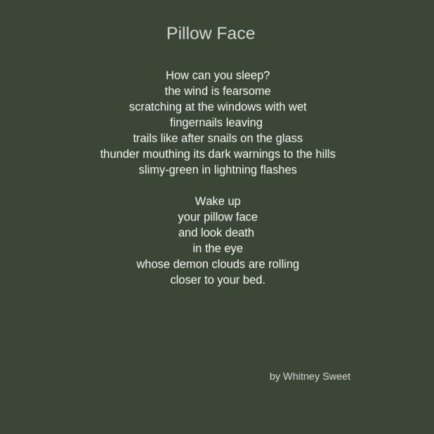 Pillow Face (1)