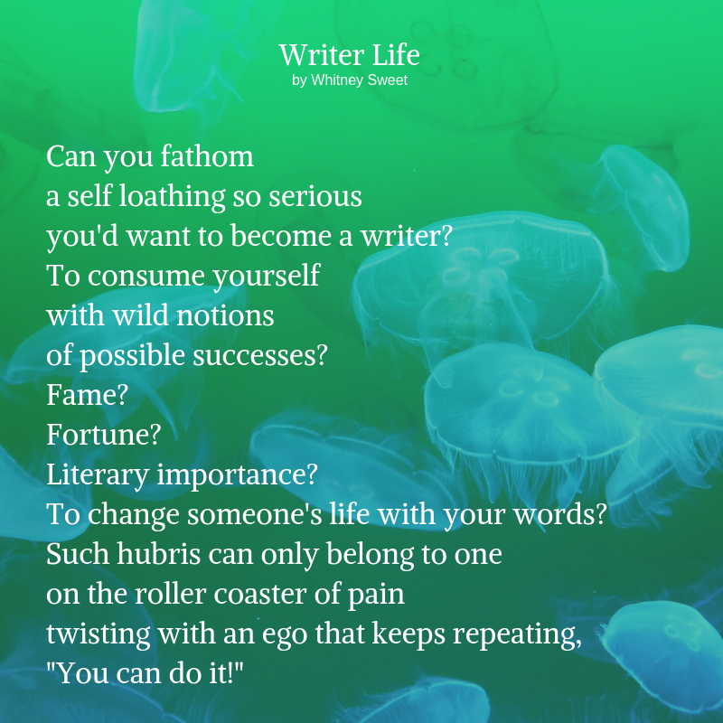 Can you fathom a self loathing so serious you'd want to become a writer_ To consume yourself with wild notions of possible successes_ Fame_ Fortune_ Literary importance_ To change someone's life with your words_